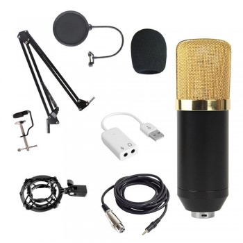 JIY Condenser Microphone With Stand (Gold)