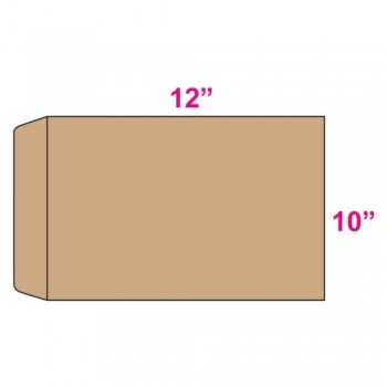 Brown Envelope - Manila - 10-inch x 12-inch